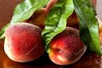 Διανομή φρούτων και χυμών στον Δήμο Κ. Τζουμέρκων